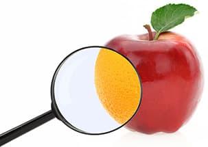 pomme rouge avec une loupe montrant une orange sur un fond blanc