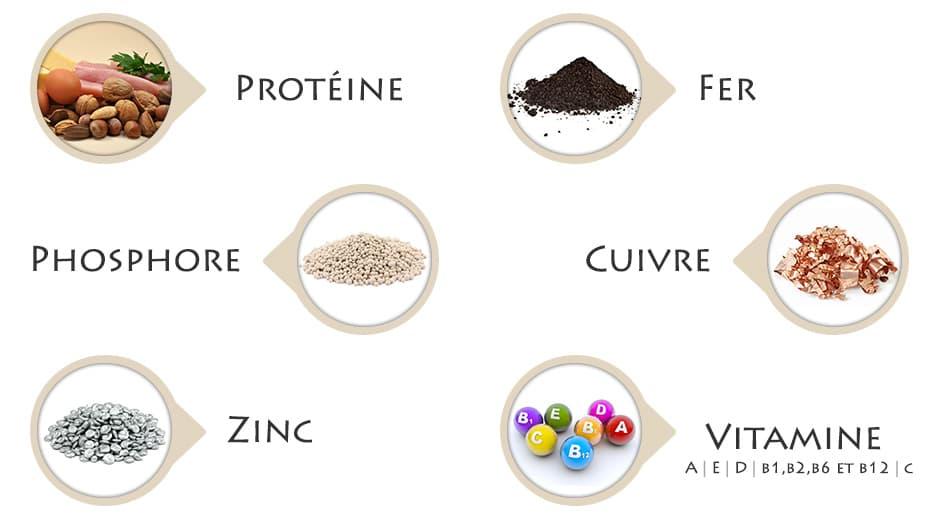 plusieurs photos de nutriments essentiels au corps
