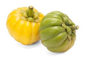deux fruits garcinia cambogia jaune et vert reposant l'un sur l'autre sur un fond blanc