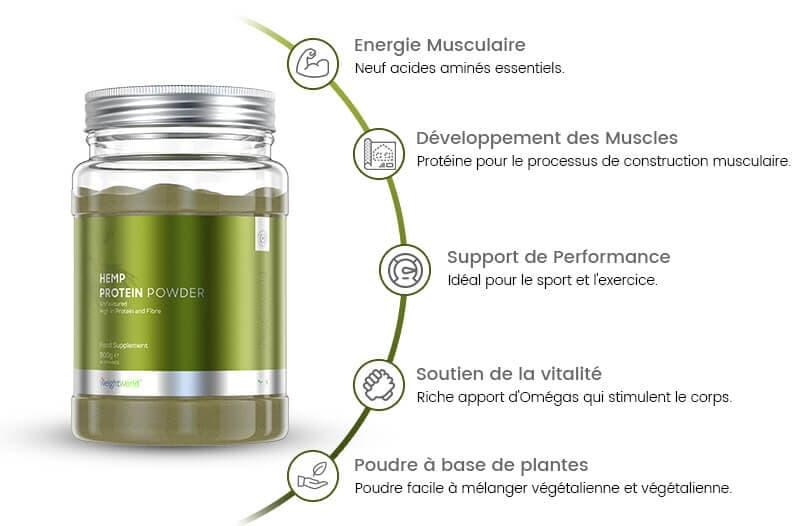 infographie de hemp protein powder proteine de chanvre large