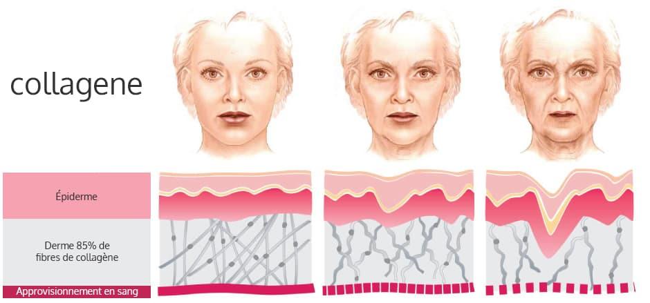 image avec trois visages de femme et les effets du collagene sur l'epiderme