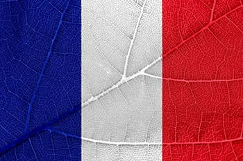 drapeau bleu blanc rouge france sur une feuille - WeightWorld