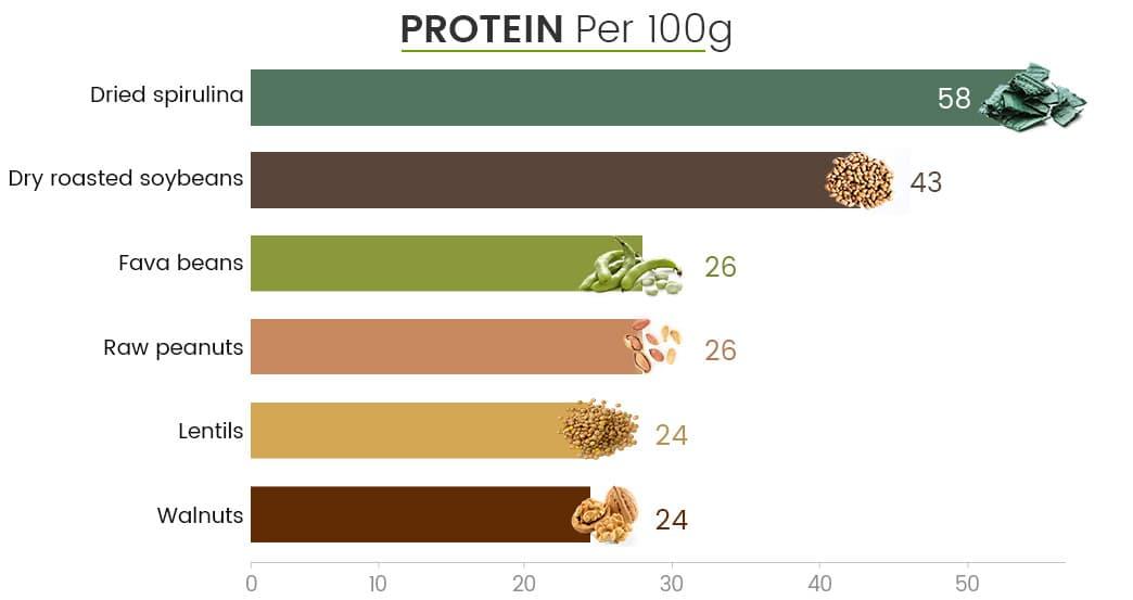 infographie montrant les équivalents en protéine de la spiruline bio