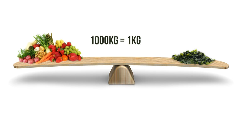 équivalent des valeurs nutritionnelles de la spiruline en fruits et légumes