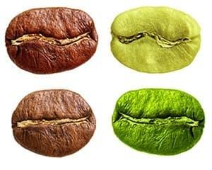 quatre grains de café de toutes les couleurs sur un fond blanc