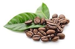deux feuilles vertes et une poignée de grains de café sur un fond blanc