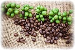 grains de café vert et marron posées sur un sac en tissu