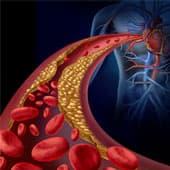 dessin de veine rempli de globules rouges venant du coeur
