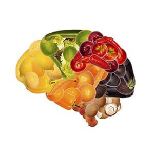 mélange de fruits et légumes représentant un cerveau humain sur fond blanc