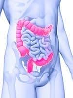 image du corps d'un homme de l'interieur avec le colon en rose