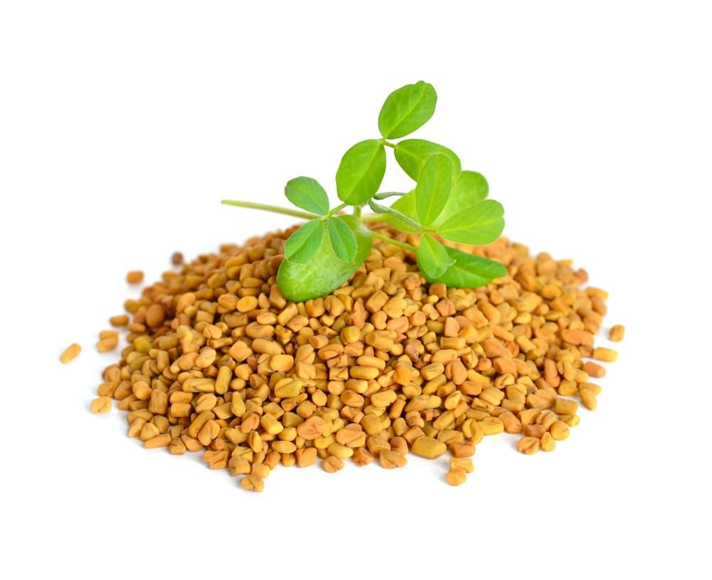 tas de graines de fenugrec avec feuilles vertes sur un fond blanc