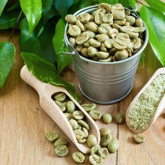 L'acide chlorogénique du green coffee : ingrédient minceur