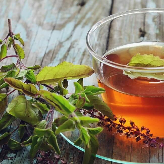 Le thé vert, une aide pour réduire le taux de graisses et de glucides ?