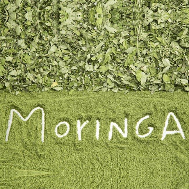 Les avantages de Moringa sur la santé