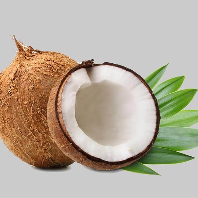 Quelles sont les vertus de l'huile de coco bio ?
