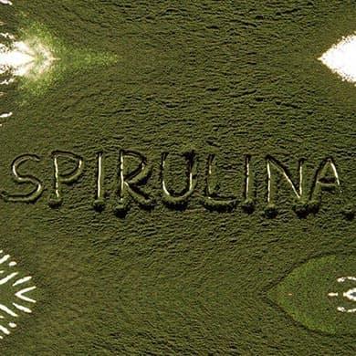 Les 6 avantages de la Spiruline