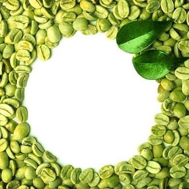 Les particularités des graines du Green Coffee