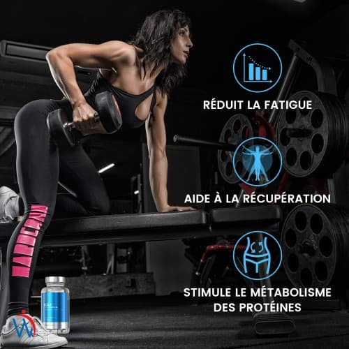 /images/product/package/bcaa-caps-fr-5.jpg