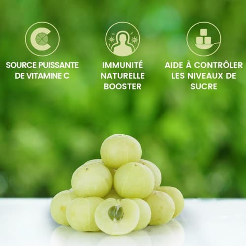 /images/product/package/bio-amla-powder-5-fr-new.jpg