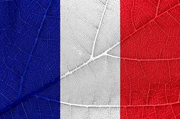 Resvératrol et 'french paradox', un mystère qui reste à élucider